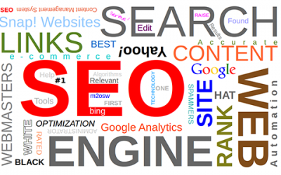 Now That I Have Good Rankings, Can I Stop Doing SEO?