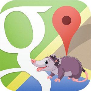 Google Possum and Local SEO