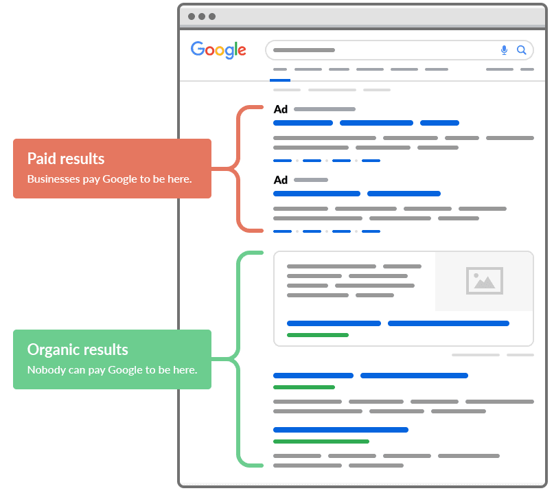 SERP- organic vs paid results